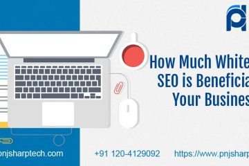 How Much White Label SEO Beneficial for your business.jpg
