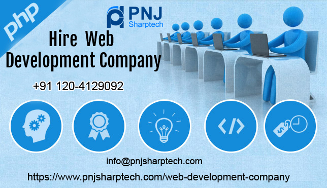 point consider when hire web development company