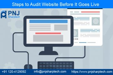 Audit Website Before It Goes Live