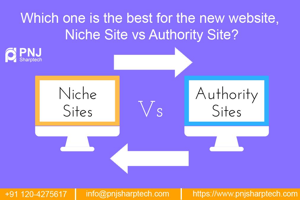 niche site vs authority site
