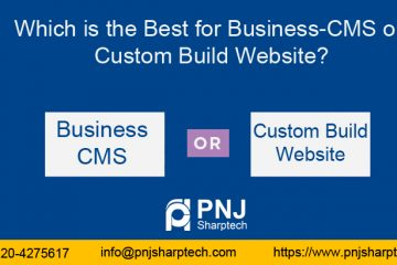 Which is the Best for Business-CMS or Custom Build Website