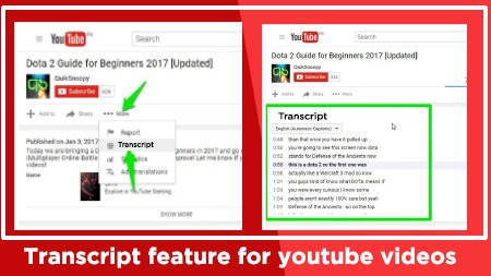 YouTube feature (Transcript)