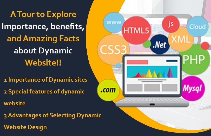 A Tour to Explore Importance, benefits, and Amazing Facts about Dynamic Website!!