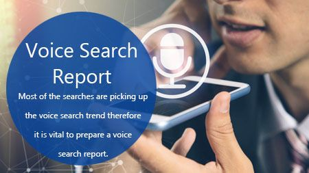 voice search report