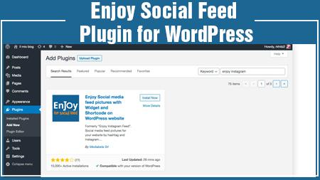 Enjoy Social Feed plugin for WordPress